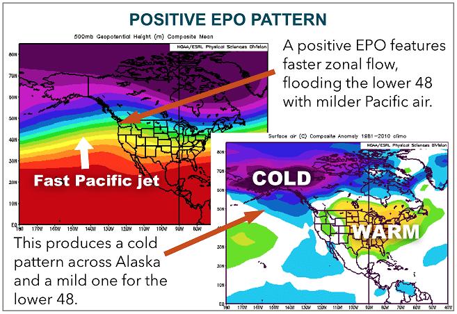 Positive EPO pattern diagram