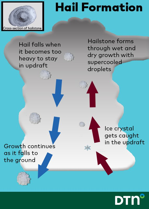 hail formation correct diagram