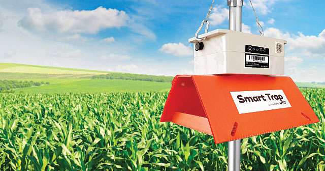 dtn smart trap in front of corn field and blue sky