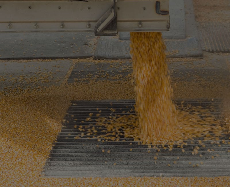 corn pouring over grate resource background