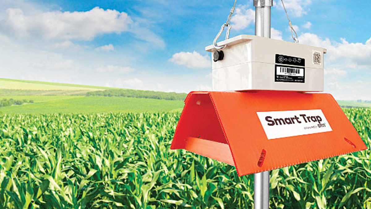 DTN Smart Trap for Agribusiness- DTN