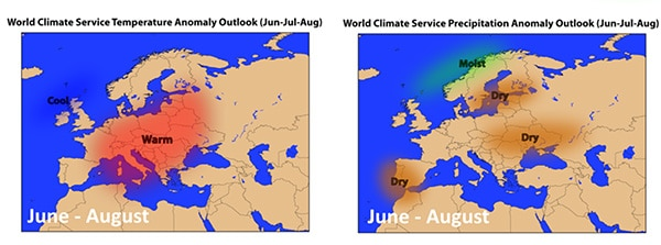 Temperature & Precipitation Anomaly Outlook June through August