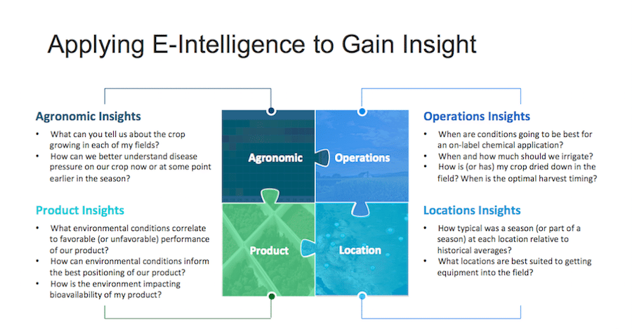 Applying E-intelligence to gain insight