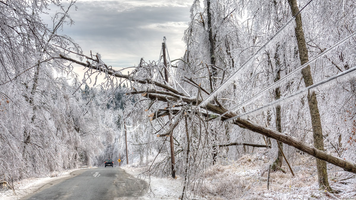 SPIA Ice Storm Damage