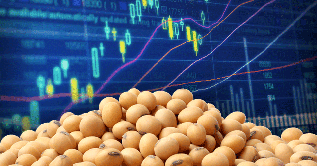 Blog Header Soybeans Stocks Chart