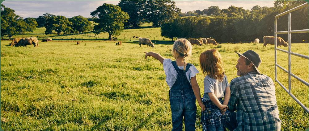 Children looking at grazing livestock