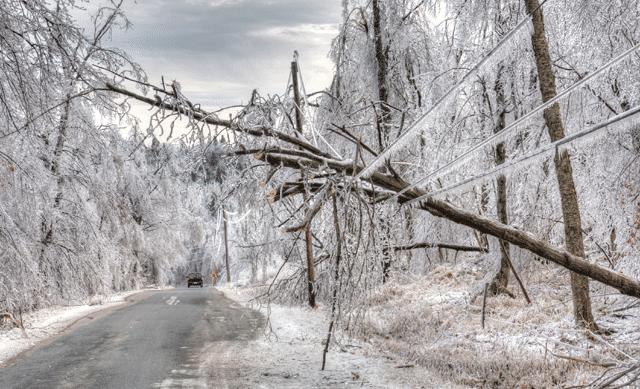 Power lines in Winter storm