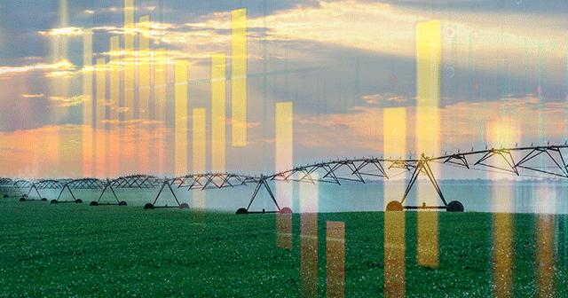 Blog header irrigation with graph
