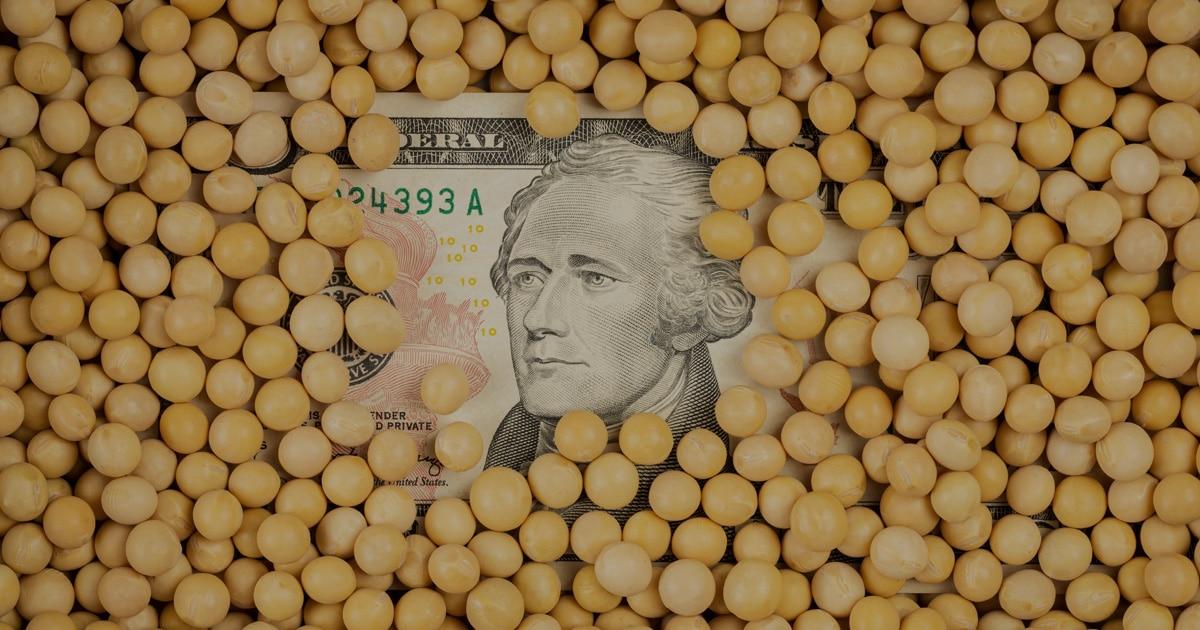 Features money in corn